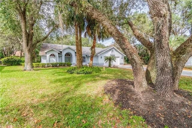 4435 Rachel Boulevard, Spring Hill, FL 34607 (MLS #U8072718) :: Zarghami Group