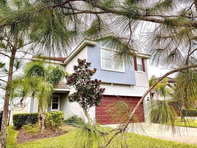 916 Terra Vista Street, Brandon, FL 33511 (MLS #U8072831) :: Cartwright Realty