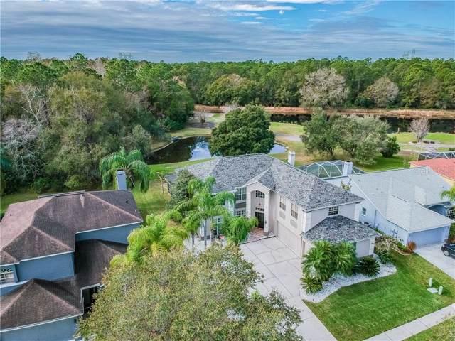 12947 Royal George Avenue, Odessa, FL 33556 (MLS #U8072835) :: Team Bohannon Keller Williams, Tampa Properties