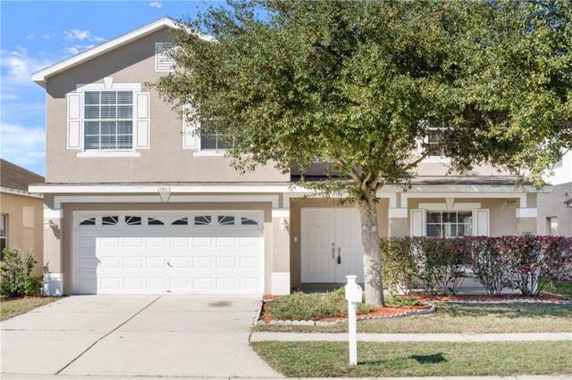 11903 Citrus Leaf Drive, Gibsonton, FL 33534 (MLS #U8072866) :: Carmena and Associates Realty Group
