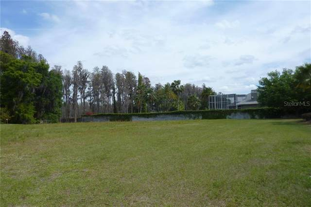 21211 Ski Way, Land O Lakes, FL 34638 (MLS #U8072886) :: Bustamante Real Estate
