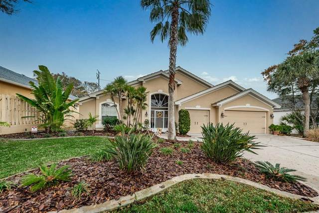 3308 Hearthstone Court, Holiday, FL 34691 (MLS #U8073183) :: Bustamante Real Estate