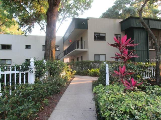 3300 Fox Chase Circle N #208, Palm Harbor, FL 34683 (MLS #U8073589) :: Premier Home Experts