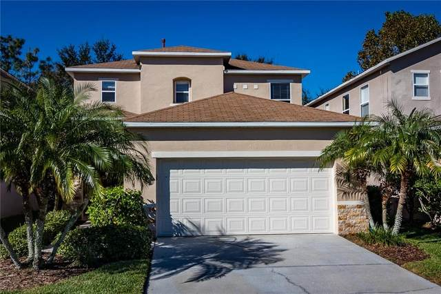 2425 Silvermoss Drive, Wesley Chapel, FL 33544 (MLS #U8073999) :: Keller Williams on the Water/Sarasota