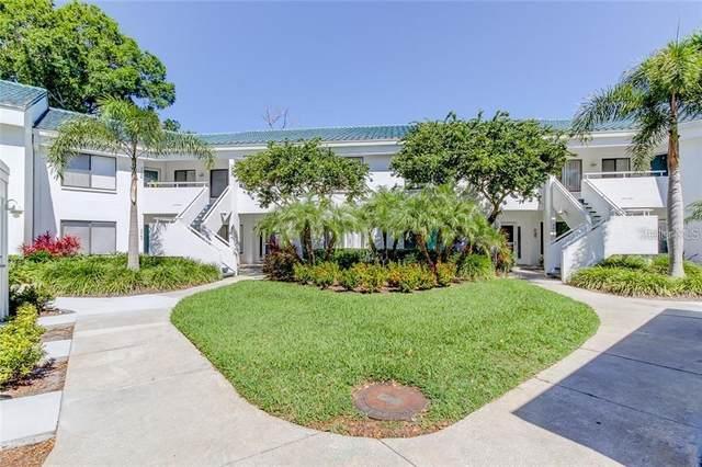 3631 Indigo Pond Drive, Palm Harbor, FL 34685 (MLS #U8074225) :: Cartwright Realty