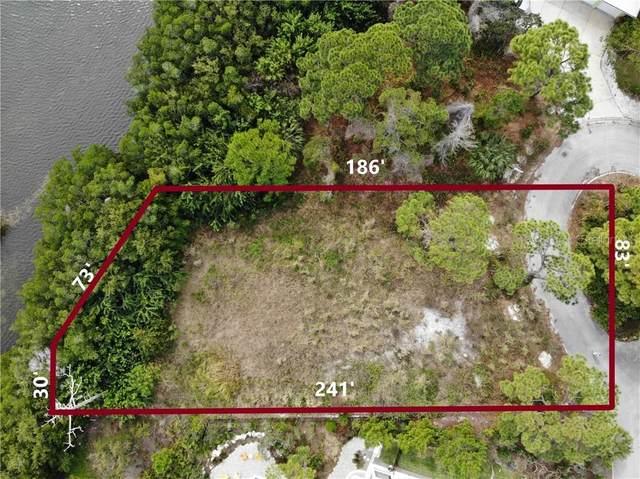 998 Osprey Court, Palm Harbor, FL 34683 (MLS #U8074270) :: The Duncan Duo Team