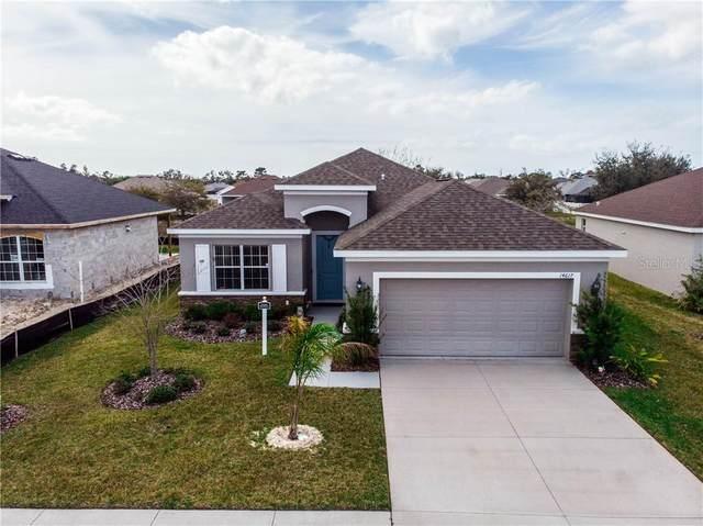 14617 Tarves Drive, Hudson, FL 34667 (MLS #U8074544) :: Pepine Realty
