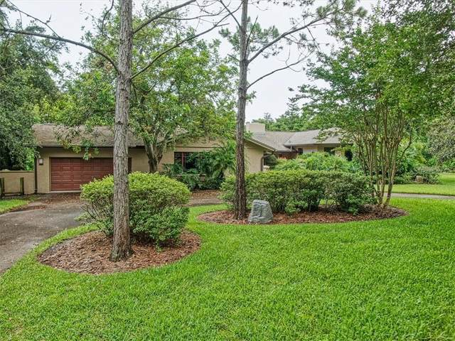 930 Pine Hill Road, Palm Harbor, FL 34683 (MLS #U8074557) :: Premier Home Experts