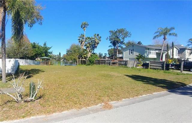 Castleworks Lane, Tarpon Springs, FL 34689 (MLS #U8074616) :: Team Borham at Keller Williams Realty