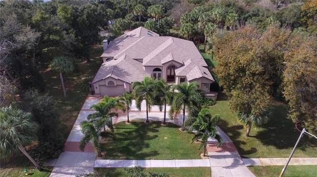 1705 Meyers Cove Drive, Tarpon Springs, FL 34689 (MLS #U8074682) :: Premier Home Experts