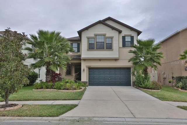 1638 Ludington Avenue, Wesley Chapel, FL 33543 (MLS #U8074739) :: Griffin Group