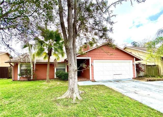 2618 Witley Avenue, Palm Harbor, FL 34685 (MLS #U8075003) :: Cartwright Realty