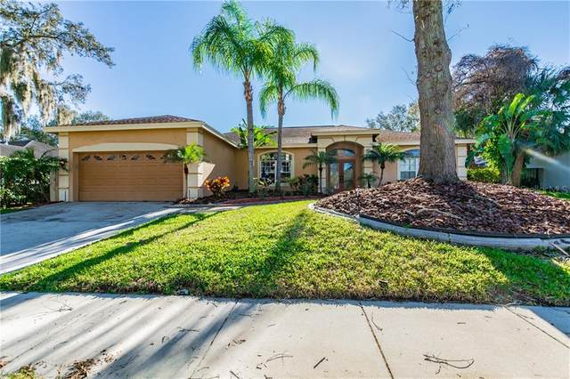 920 Oakview Road, Tarpon Springs, FL 34689 (MLS #U8075020) :: Cartwright Realty
