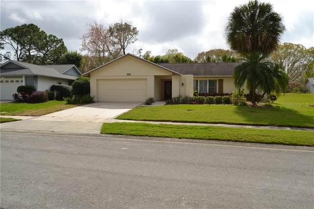 3144 Brunswick Circle, Palm Harbor, FL 34684 (MLS #U8075052) :: The Light Team