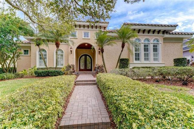1150 Skye Lane, Palm Harbor, FL 34683 (MLS #U8075081) :: Premier Home Experts