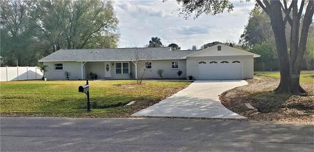 3435 E Lake Drive, Land O Lakes, FL 34639 (MLS #U8075093) :: 54 Realty
