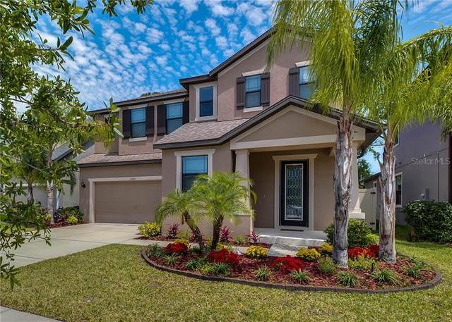 11315 Lazy Hickory Lane, Tampa, FL 33635 (MLS #U8075142) :: Team Pepka