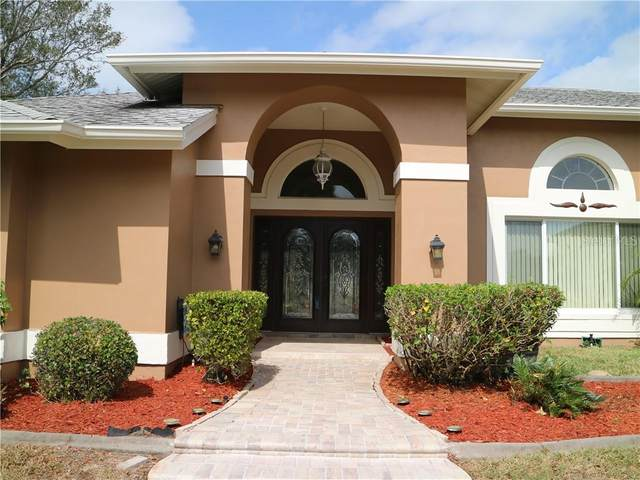 1700 Grand Central Drive, Tarpon Springs, FL 34689 (MLS #U8075147) :: Lovitch Group, LLC
