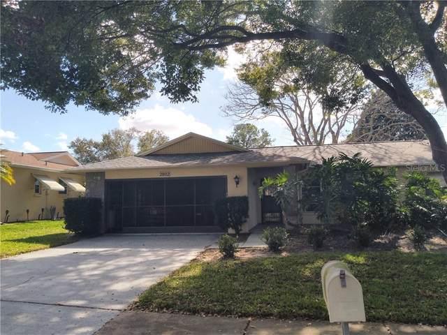 2802 Cameron Court, Palm Harbor, FL 34684 (MLS #U8075201) :: Lovitch Group, LLC
