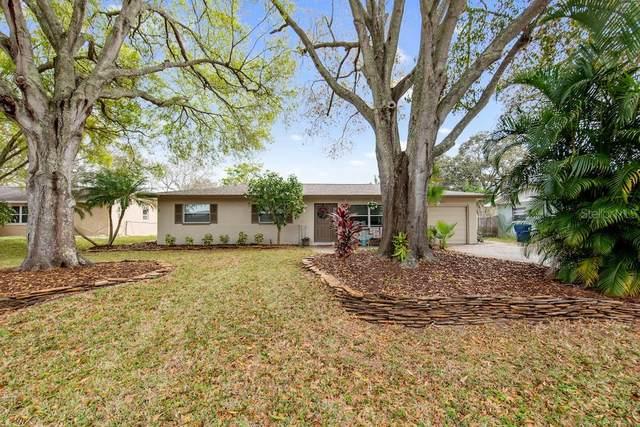1731 El Trinidad Drive E, Clearwater, FL 33759 (MLS #U8075232) :: Lovitch Group, LLC