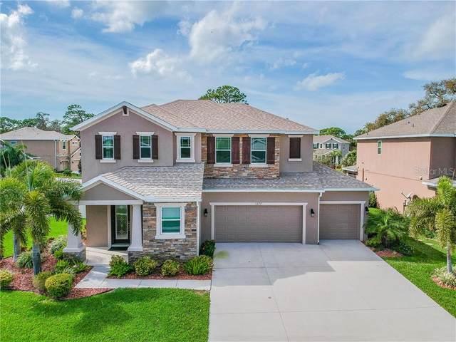 1277 Windy Bay Shl, Tarpon Springs, FL 34689 (MLS #U8075251) :: Cartwright Realty