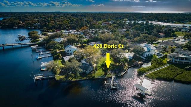 428 Doric Court, Tarpon Springs, FL 34689 (MLS #U8075271) :: Armel Real Estate