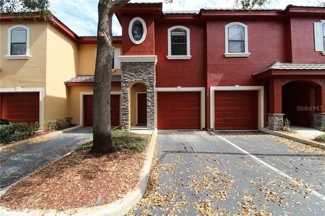 2151 Chianti Place #126, Palm Harbor, FL 34683 (MLS #U8075290) :: The Light Team