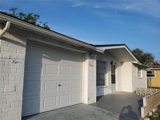 7825 Arbordale Drive, Port Richey, FL 34668 (MLS #U8075369) :: Premier Home Experts