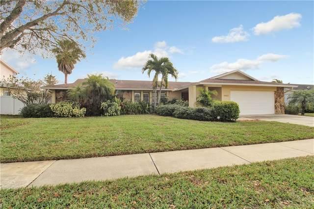 14463 Sandpiper Circle, Clearwater, FL 33762 (MLS #U8075501) :: The Heidi Schrock Team