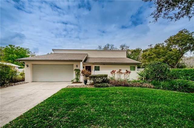 15534 Woodway Drive, Tampa, FL 33613 (MLS #U8075578) :: Premium Properties Real Estate Services