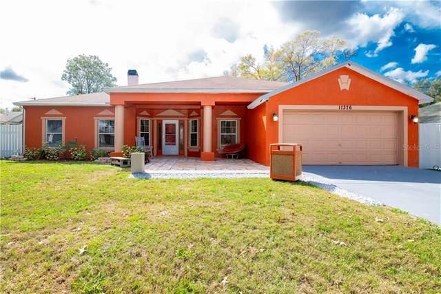 11376 Blythville Road, Spring Hill, FL 34608 (MLS #U8075774) :: GO Realty