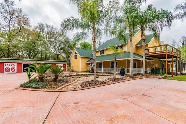 15804 Timberwood Dr, Tampa, FL 33625 (MLS #U8075797) :: Griffin Group