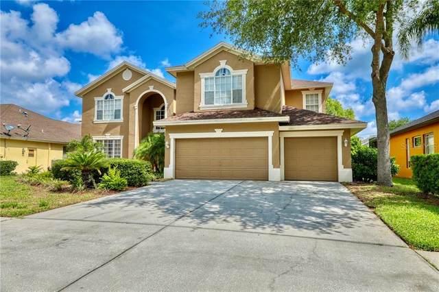 4119 La Salle Drive, Palm Harbor, FL 34685 (MLS #U8075808) :: Premium Properties Real Estate Services