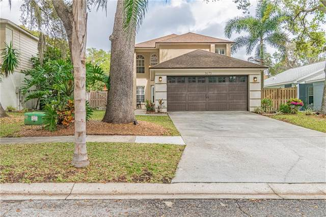 3673 Fremantle Drive, Palm Harbor, FL 34684 (MLS #U8075823) :: The Dora Campbell Team
