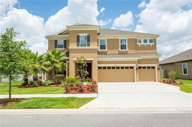 32000 Watoga Loop, Wesley Chapel, FL 33543 (MLS #U8075836) :: Baird Realty Group