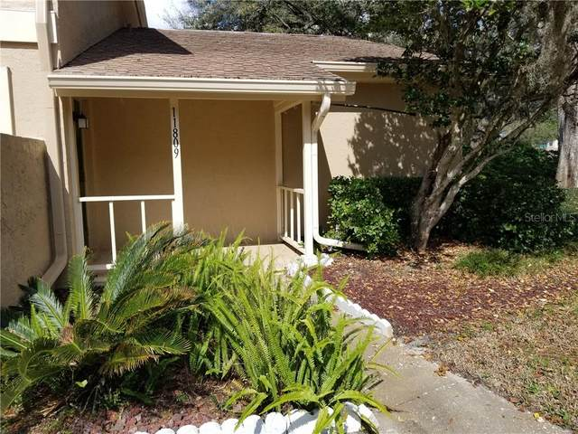 11809 Oldegrove Place, Temple Terrace, FL 33617 (MLS #U8075898) :: Griffin Group