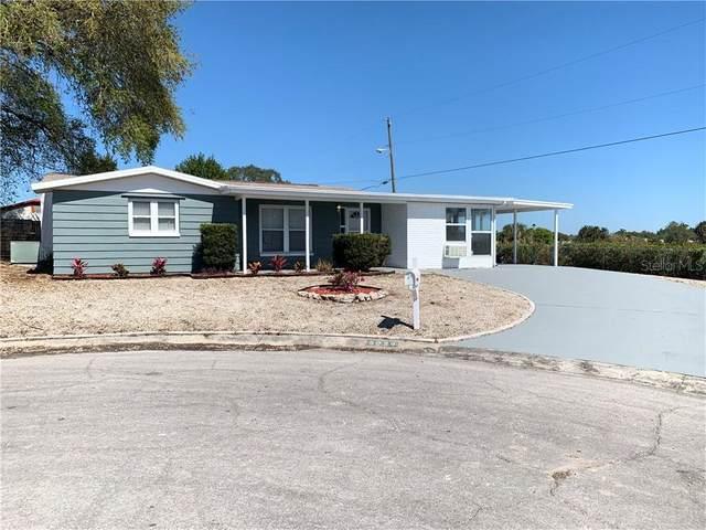 5039 Genesis Avenue, Holiday, FL 34690 (MLS #U8076020) :: Baird Realty Group