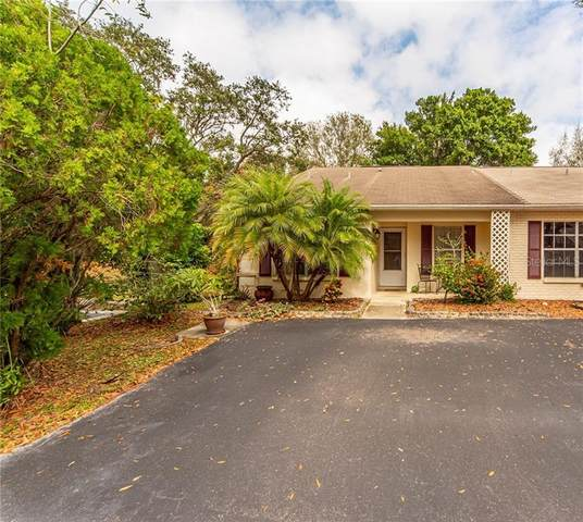 277 Kent Place, Safety Harbor, FL 34695 (MLS #U8076044) :: The Duncan Duo Team