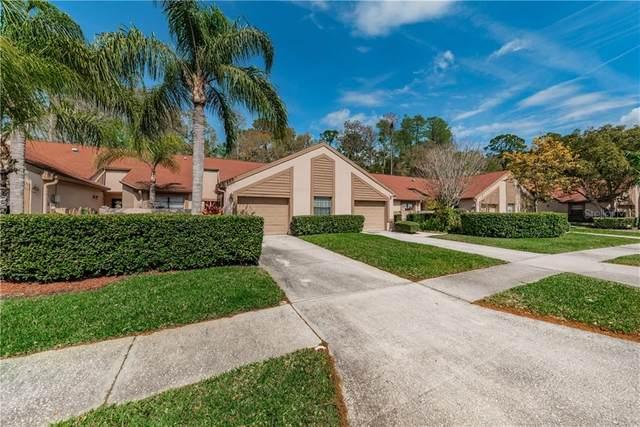 4029 Mermoor Court, Palm Harbor, FL 34685 (MLS #U8076356) :: Delgado Home Team at Keller Williams