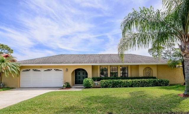 3219 Sandy Ridge Drive, Clearwater, FL 33761 (MLS #U8076360) :: 54 Realty