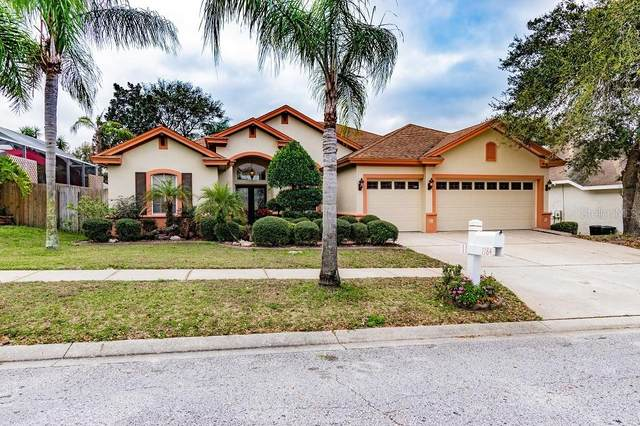 1184 Sawgrass Drive, Tarpon Springs, FL 34689 (MLS #U8076380) :: Keller Williams Realty Peace River Partners