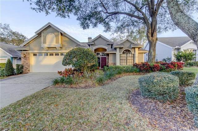 4121 Seton Circle, Palm Harbor, FL 34683 (MLS #U8076387) :: Keller Williams Realty Peace River Partners