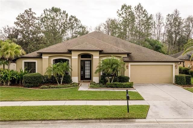 15408 Princewood Lane, Land O Lakes, FL 34638 (MLS #U8076550) :: Team Pepka