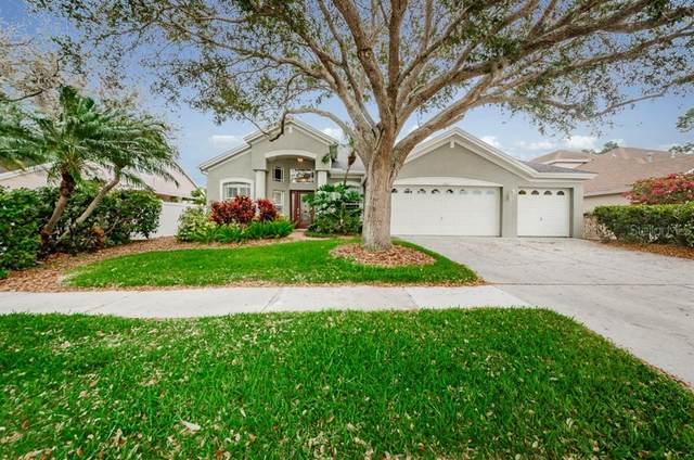 1721 Longview Lane, Tarpon Springs, FL 34689 (MLS #U8076697) :: Zarghami Group