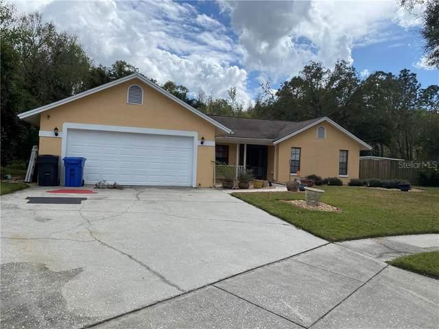 3420 Bloomingdale Oaks Drive, Valrico, FL 33596 (MLS #U8076773) :: Griffin Group