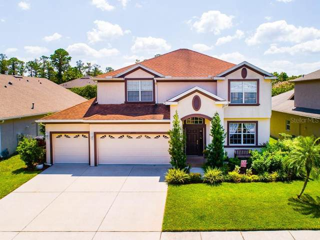 27028 Firebush Drive, Wesley Chapel, FL 33544 (MLS #U8077972) :: Team Bohannon Keller Williams, Tampa Properties