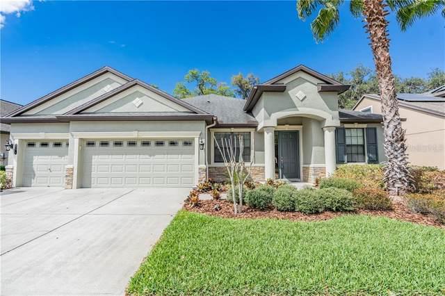 20014 Outpost Point Drive, Tampa, FL 33647 (MLS #U8078000) :: Team Bohannon Keller Williams, Tampa Properties