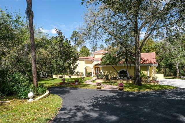 2951 Eagles Nest Drive, Palm Harbor, FL 34683 (MLS #U8078191) :: Delgado Home Team at Keller Williams