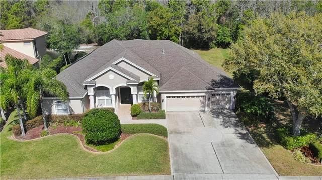 4918 Quill Court, Palm Harbor, FL 34685 (MLS #U8078223) :: Premium Properties Real Estate Services