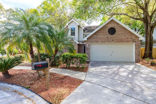 694 Greenglen Lane, Palm Harbor, FL 34684 (MLS #U8078365) :: Team Borham at Keller Williams Realty